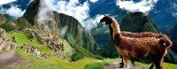 Inca Jungle Hike to Machu Picchu 4 Days 3 Nights